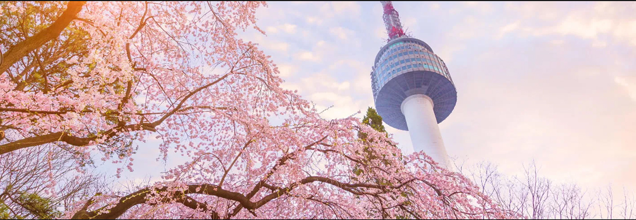 ¡La torre más famosa de Seul!