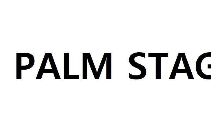 YG Entertainment ¿Entrar en el mercado de conciertos digitales con Palm Stage?