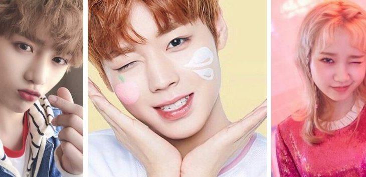Descubre que ídolos de K-pop son los más adorables