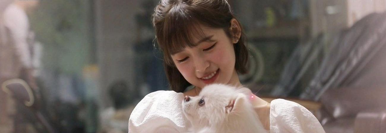 Arin de Oh My Girl participa en una campaña pictórica de donación para animales abandonados