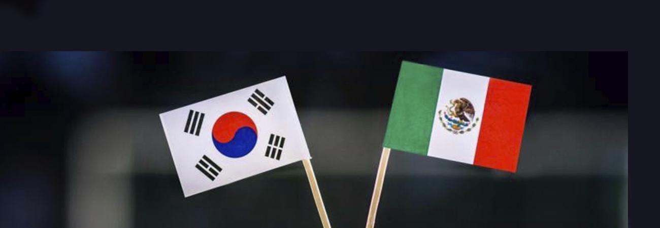 Video: ¿Qué opinan los coreanos sobre los mexicanos?