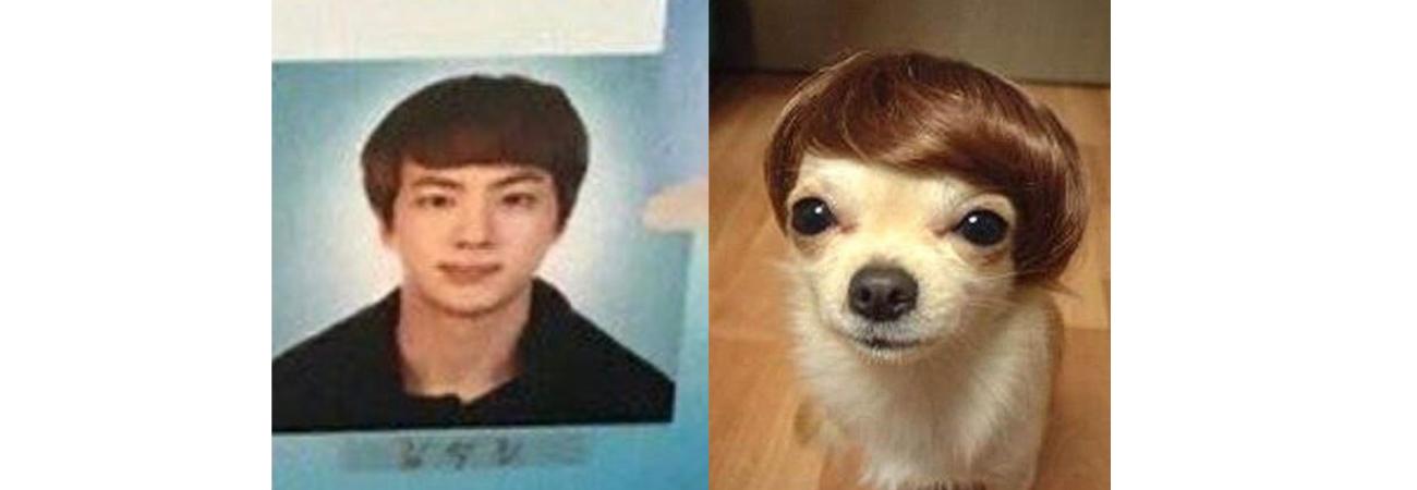 Las fotos de pasaporte de BTS se convierten en los mejores memes para ARMY