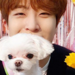 Youngjae de GOT7 está feliz en su nueva agencia, ¡Sus fans están conmovidos!