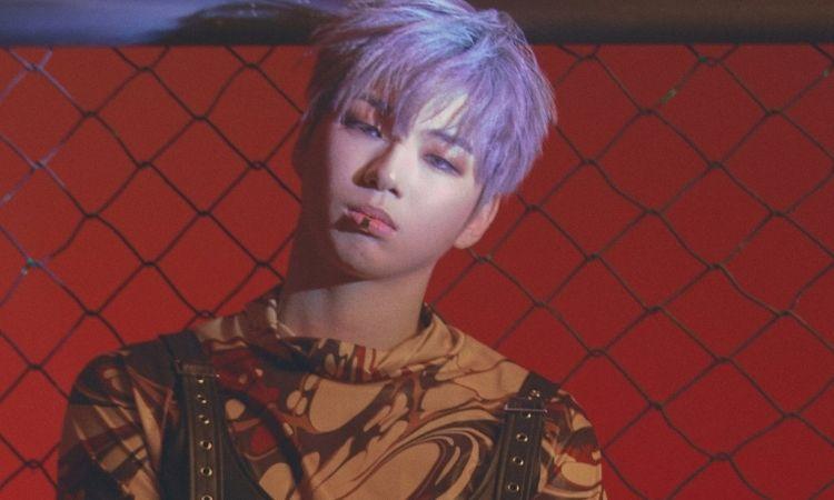 Fans de K-pop eligen a Kang Daniel como el regreso más esperado de febrero