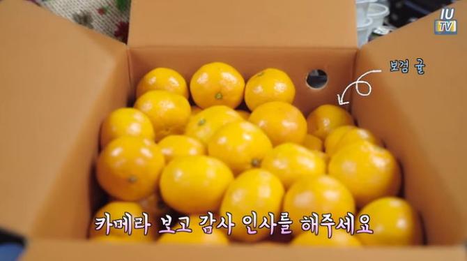 Park Bo Gum hizo un dulce regalo a IU, ¡Los fans piden más interacciones!
