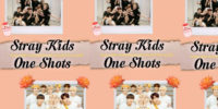 Fanfic: Stray Kids One Shots, Hyunjin