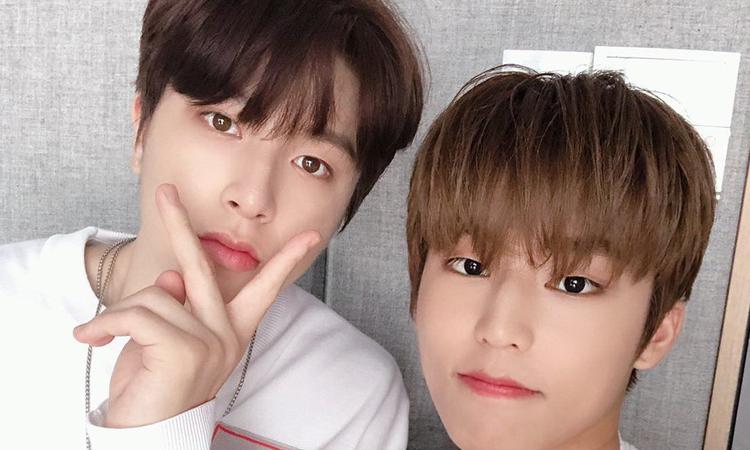 Jeongwoo y Junghwa de TREASURE reciben resultados de COVID