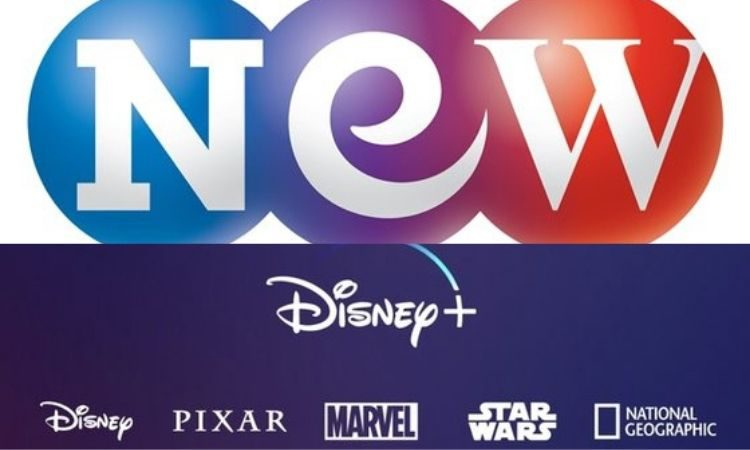 Studio & New y Disney Plus