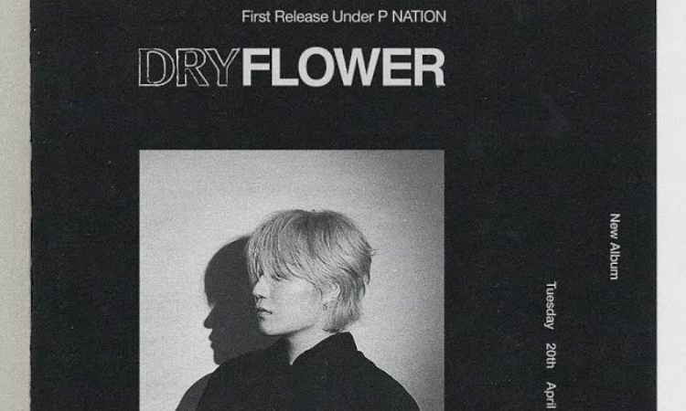 PENOMECO lanza 'Dry Flower', su primer álbum como parte de P NATION