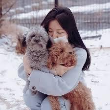 Shuhua y sus cachorros