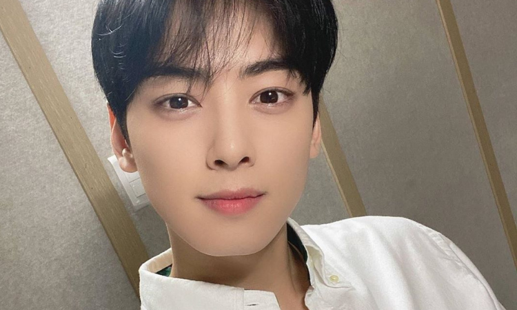 ¿Quién es el guapo y misterioso hermano de Cha Eun Woo de ASTRO?