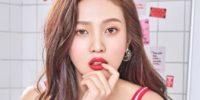 Joy de Red Velvet