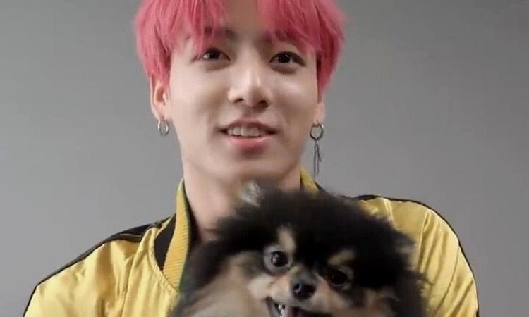 Jungkook de BTS confirma su amor por los animales de forma significativa