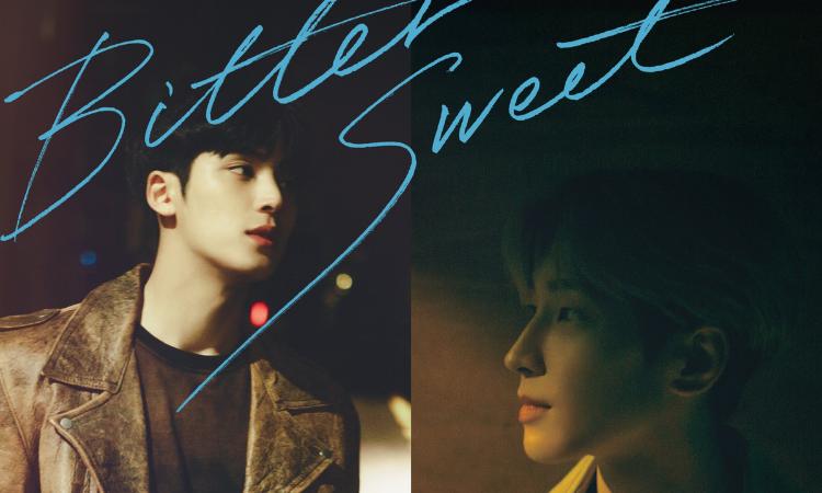 Wonwoo y Mingyu de SEVENTEEN nos enamoran con sus nuevos posters para'Bittersweet'