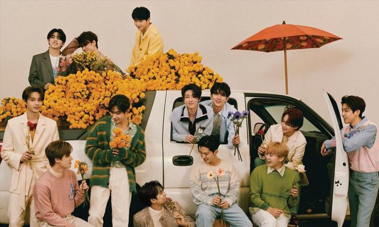 SEVENTEEN desea regalarle flores a CARAT en sus fotos conceptuales Your Choice