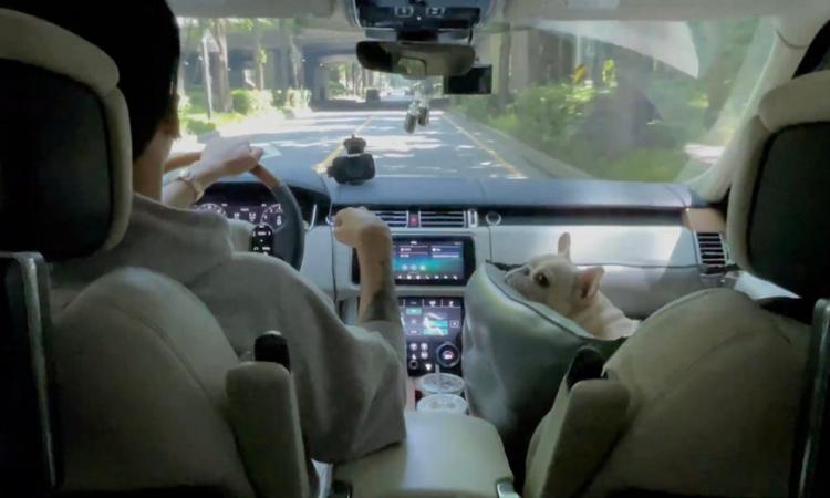 RAVI conduce junto a su cachorro en el vídeo teaser de 'Cardigan'